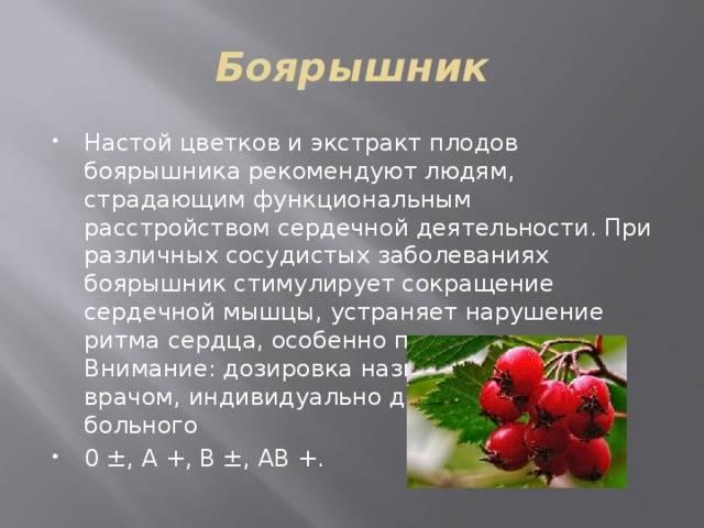 Целебные свойства боярышника