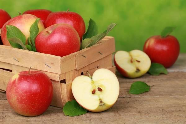 Яблоки вред польза