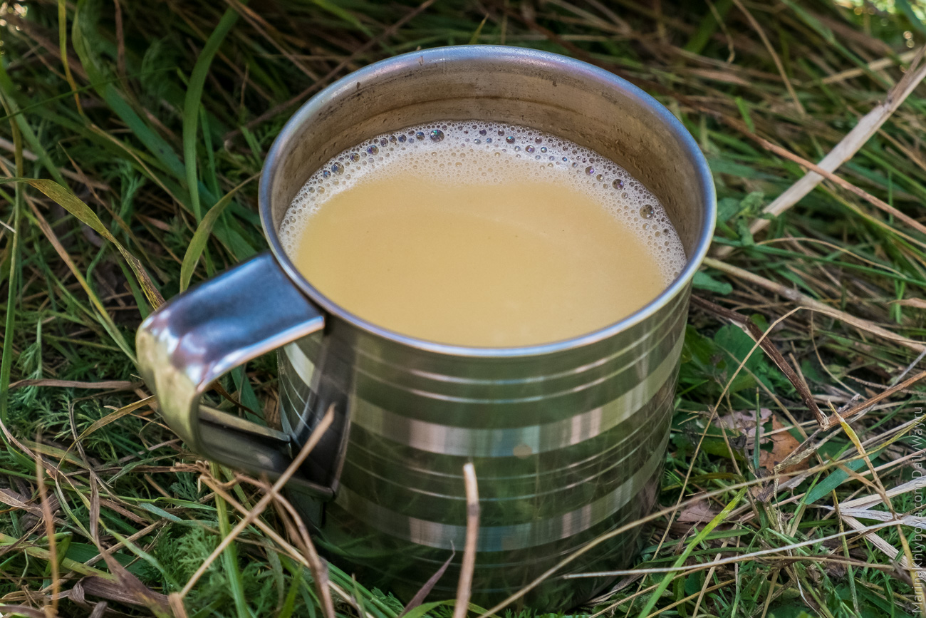 Калмыкский чай: состав, способы приготовления, свойства