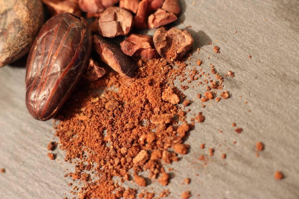 Какао бобы. польза и вред для здоровья, где растут, как готовить, употреблять