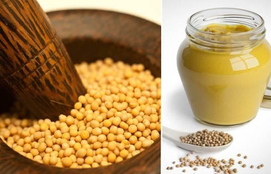 Листовая горчица: полезные свойства, выращивание