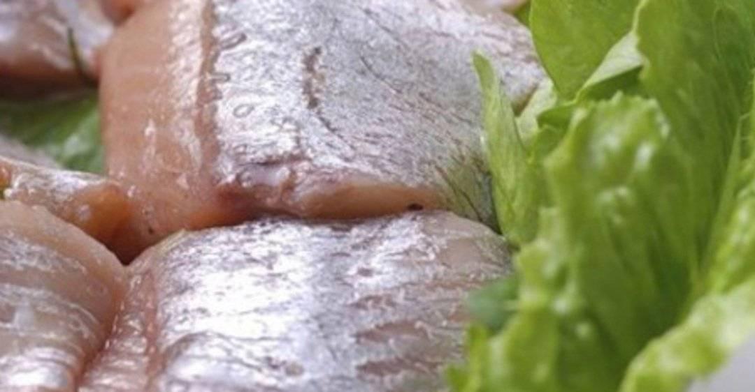 Польза и вред соленой, слабосоленой, свежей, вареной селедки