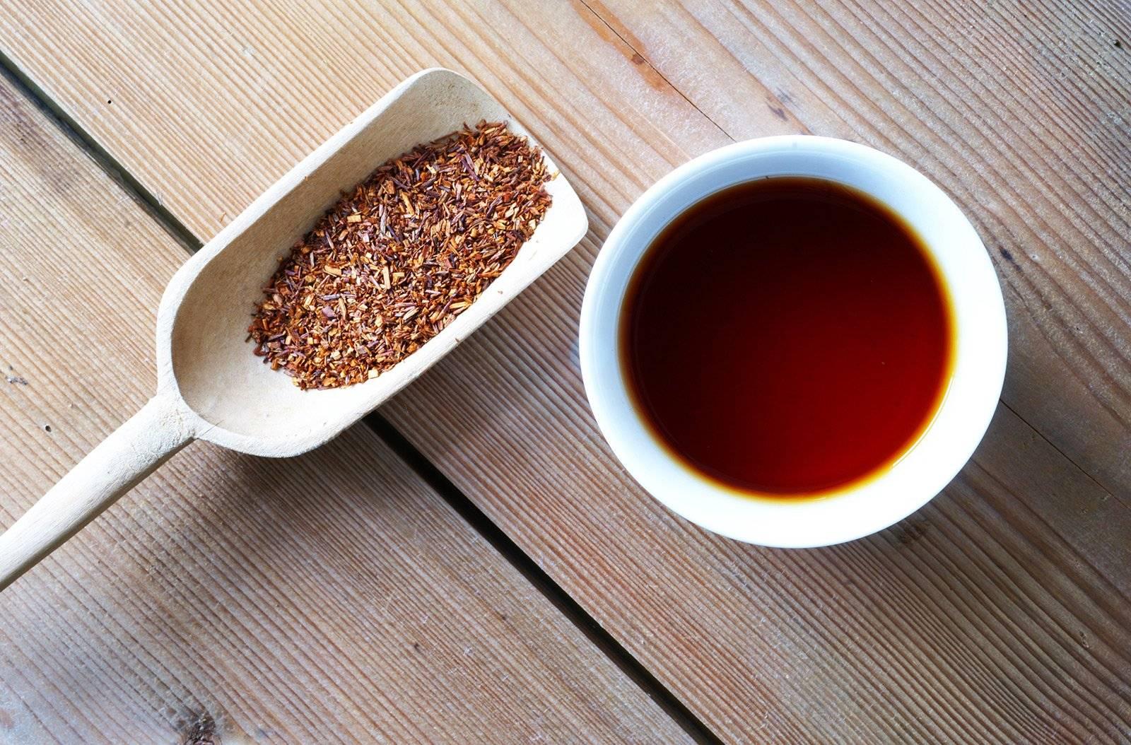 Чай ройбуш: польза, вред и свойства напитка