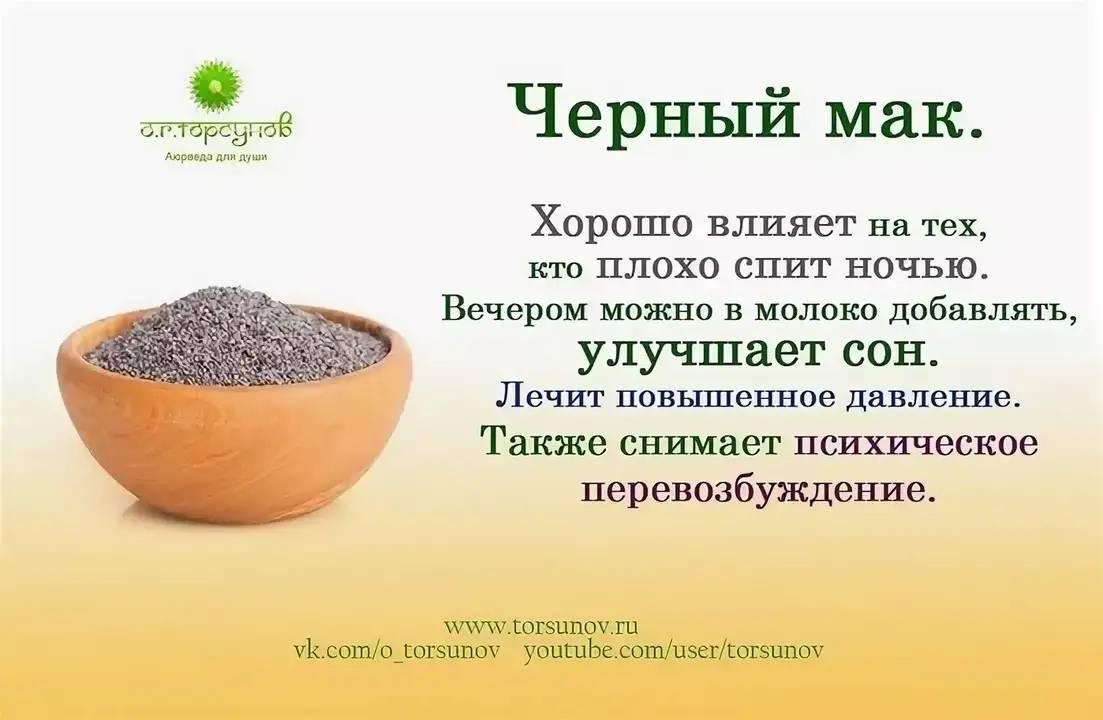 Семена мака — польза и вред для здоровья