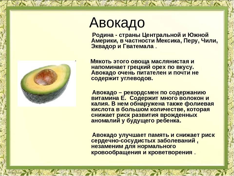 Папайя: польза и вред для организма