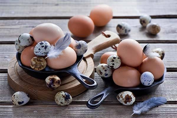 В чем польза перепелиных яиц для женщин
