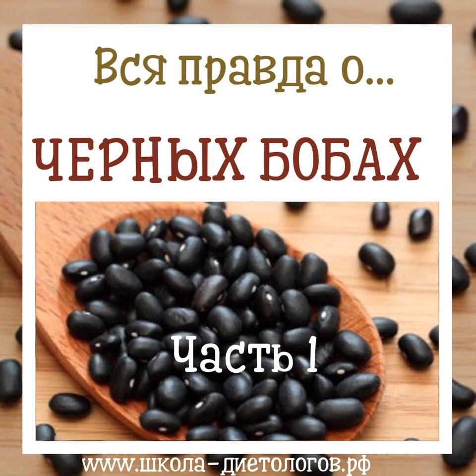 Черная фасоль польза и вред для здоровья