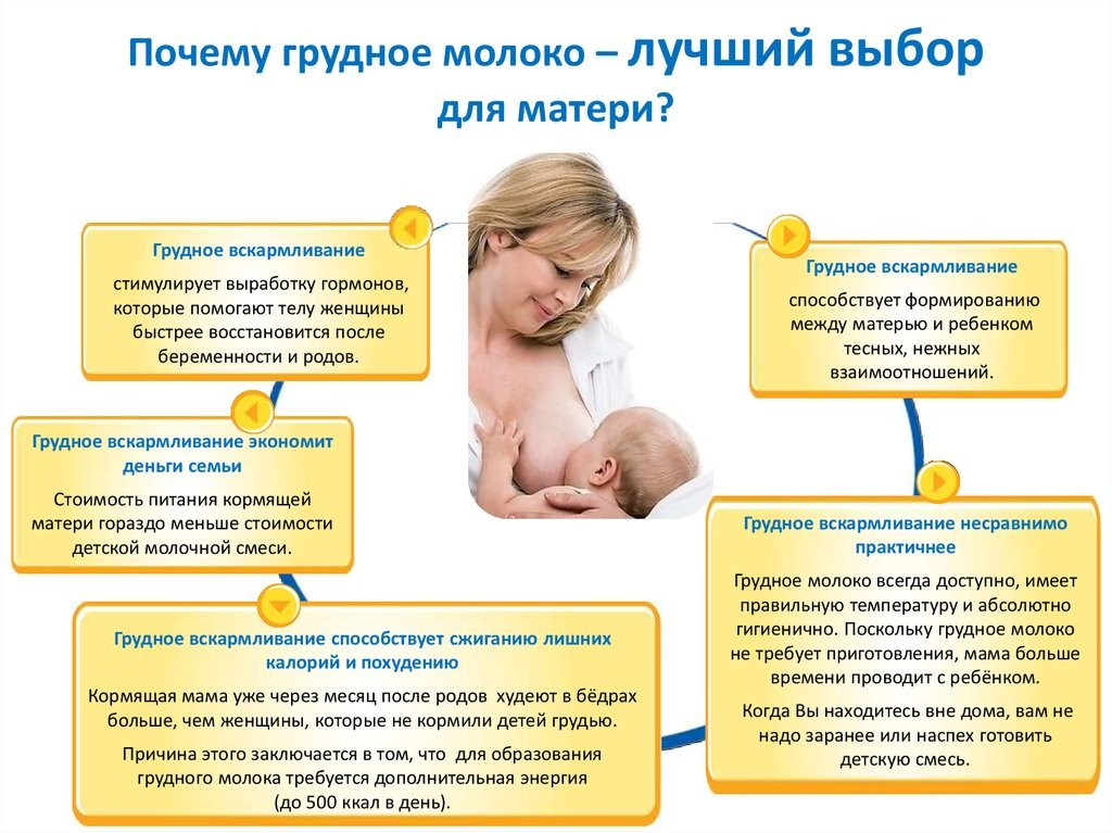 Можно ли пить молоко при гв: меры предосторожности ⨮ 5 рецептов для кормящей мамы