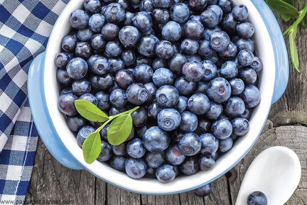 Черника при беременности: полезные свойства лесной ягоды