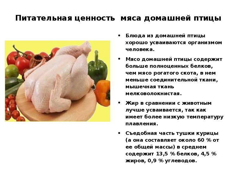 Польза и вред гусиного мяса, его калорийность и состав, тонкости приготовления