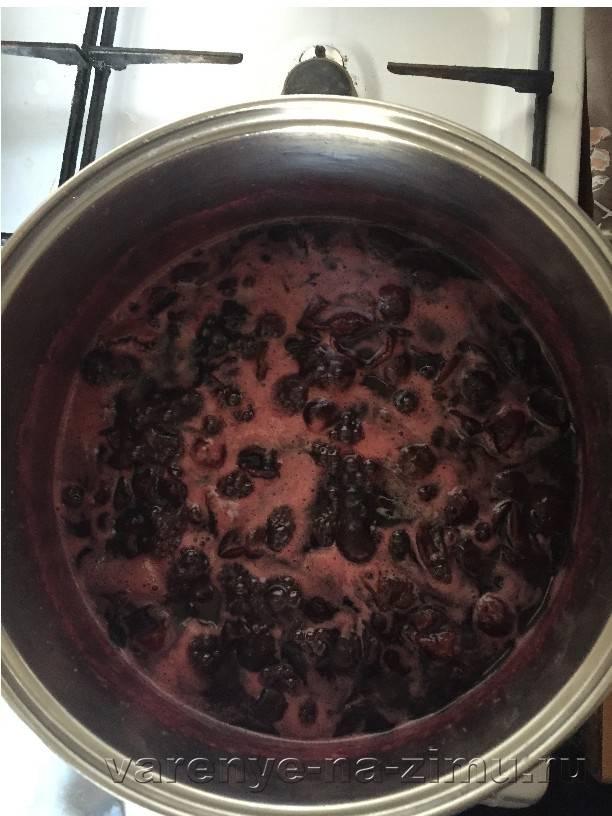 Рецепты правильного приготовления варенья из терна с косточками