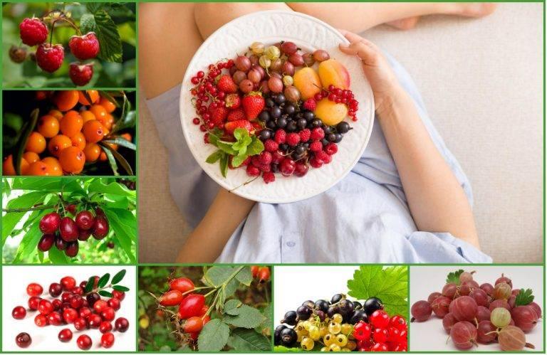 9 полезных продуктов для почек