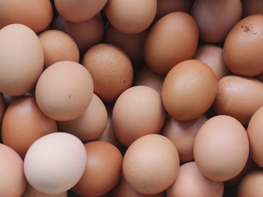 Чем отличаются белые куриные яйца от коричневых и какие лучше покупать