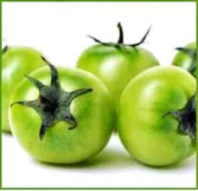 Зеленые помидоры — польза и вред для организма