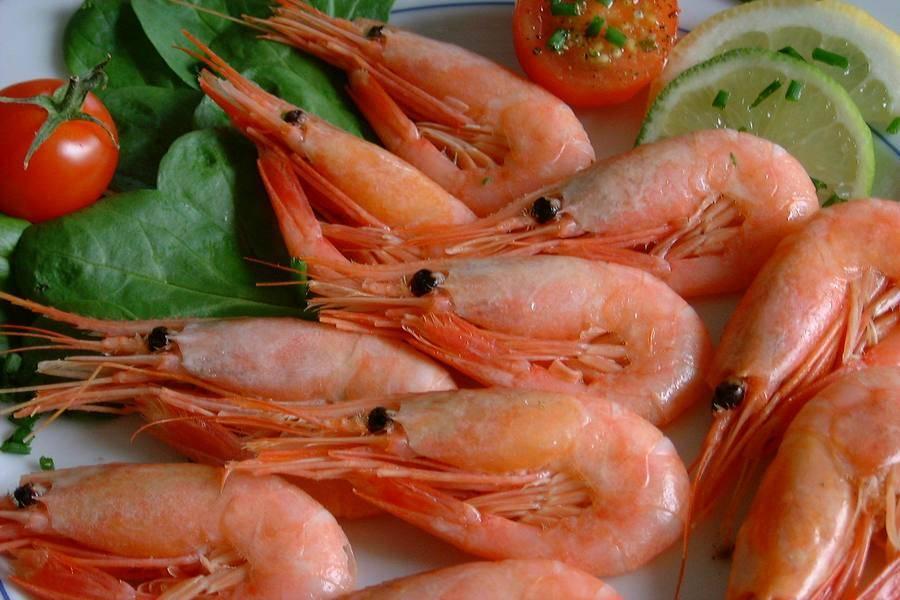 Креветки — польза и вред этого морепродукта