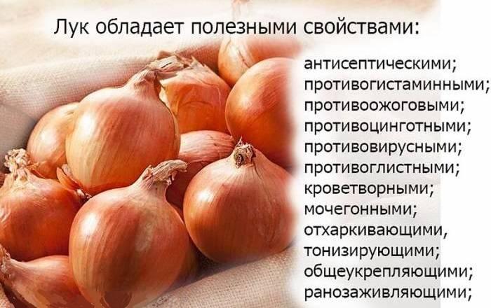 Польза и вред красного лука для здоровья организма