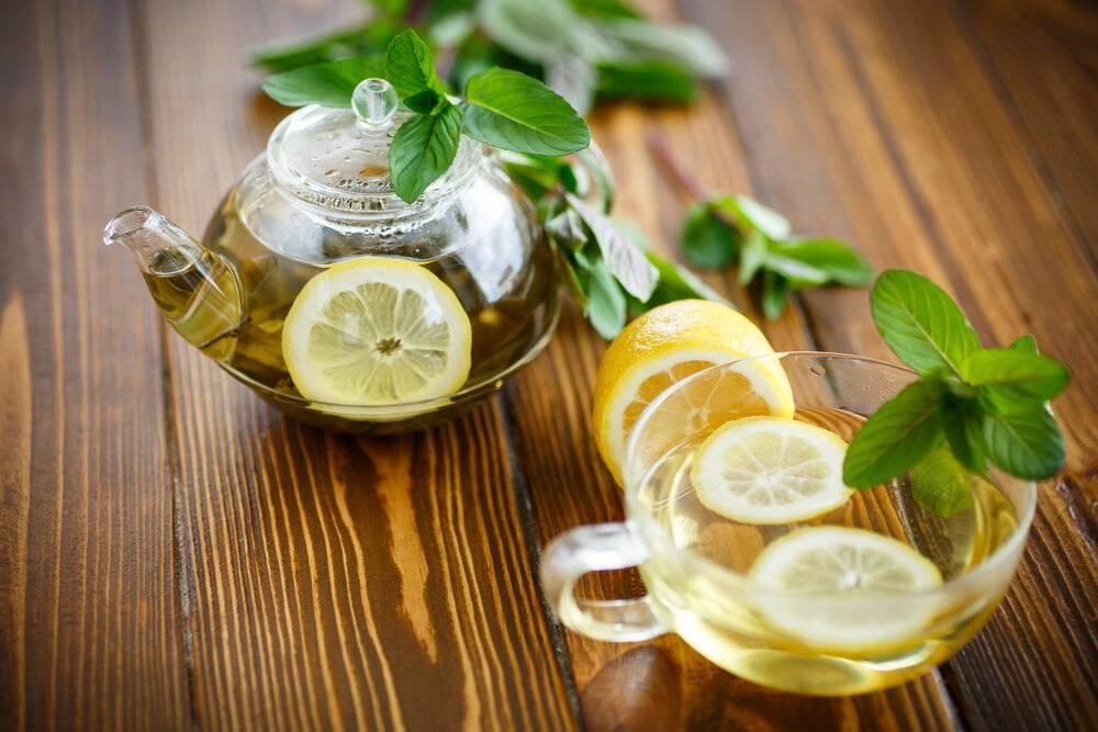 Польза и вред мяты с лимоном для организма