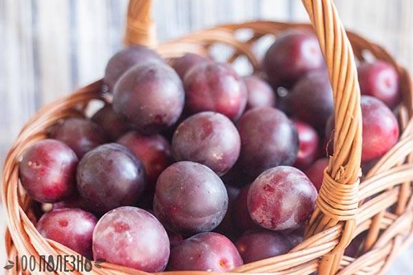 Польза алычи и вред: нужны ли эти плоды на вашем столе
