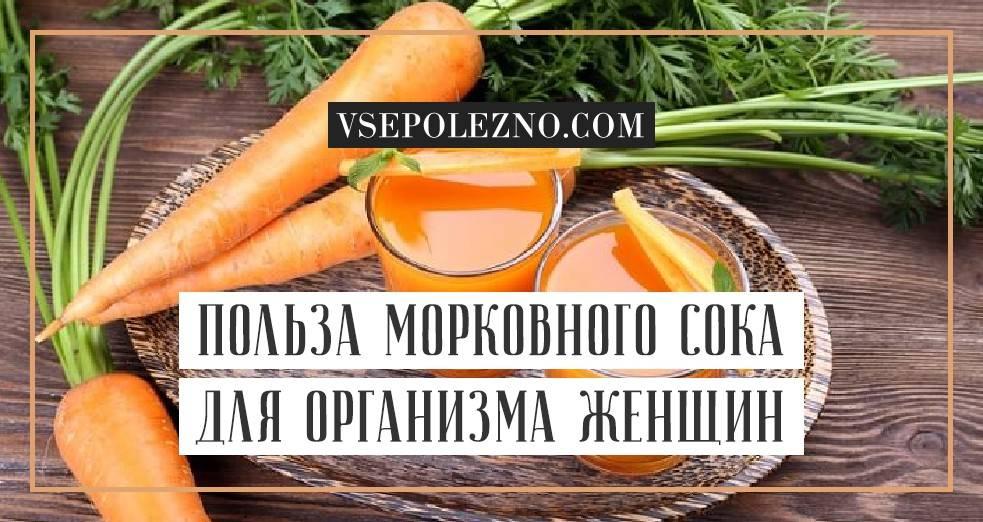 Морковный чай — польза и вред для здоровья