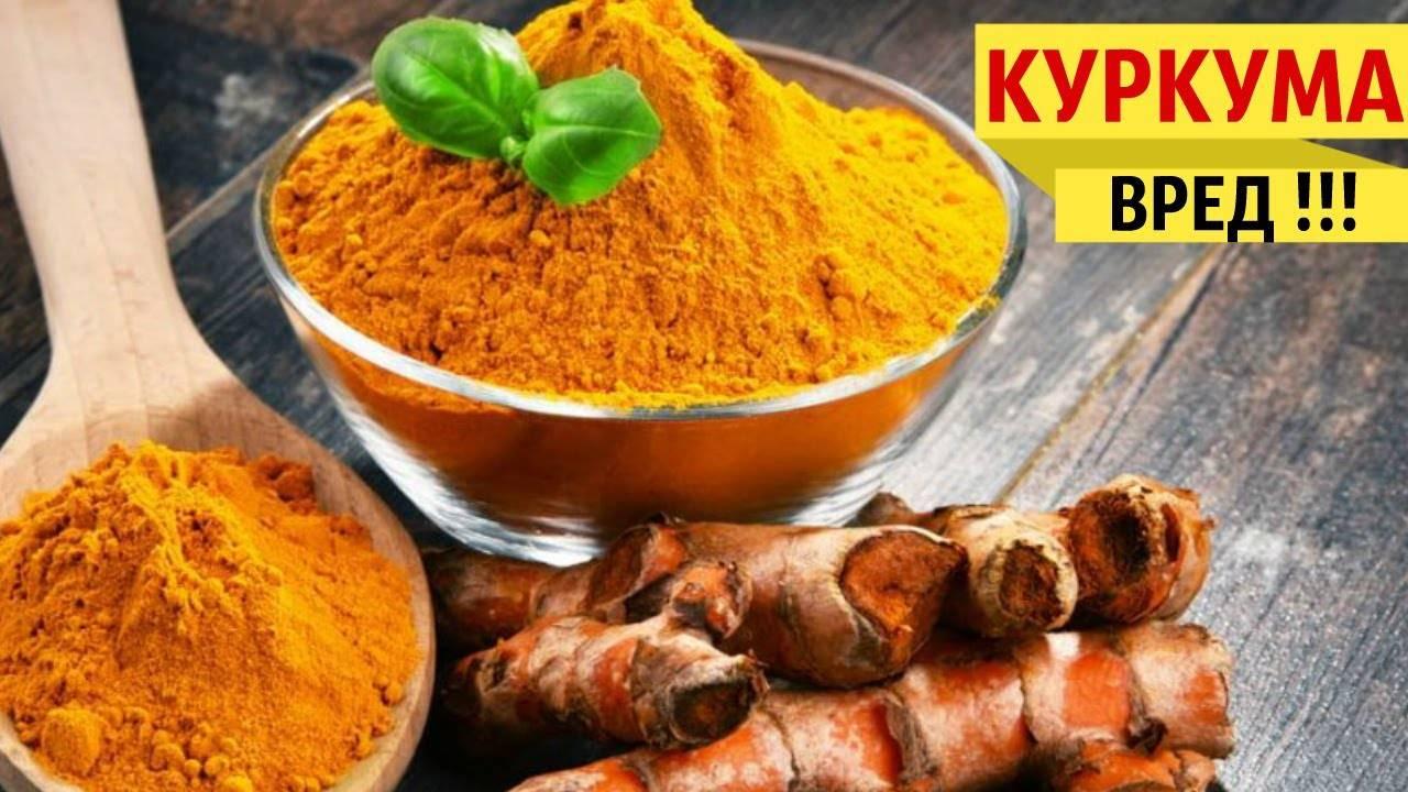 Куркума: польза и вред для здоровья, лечебные свойства, применение