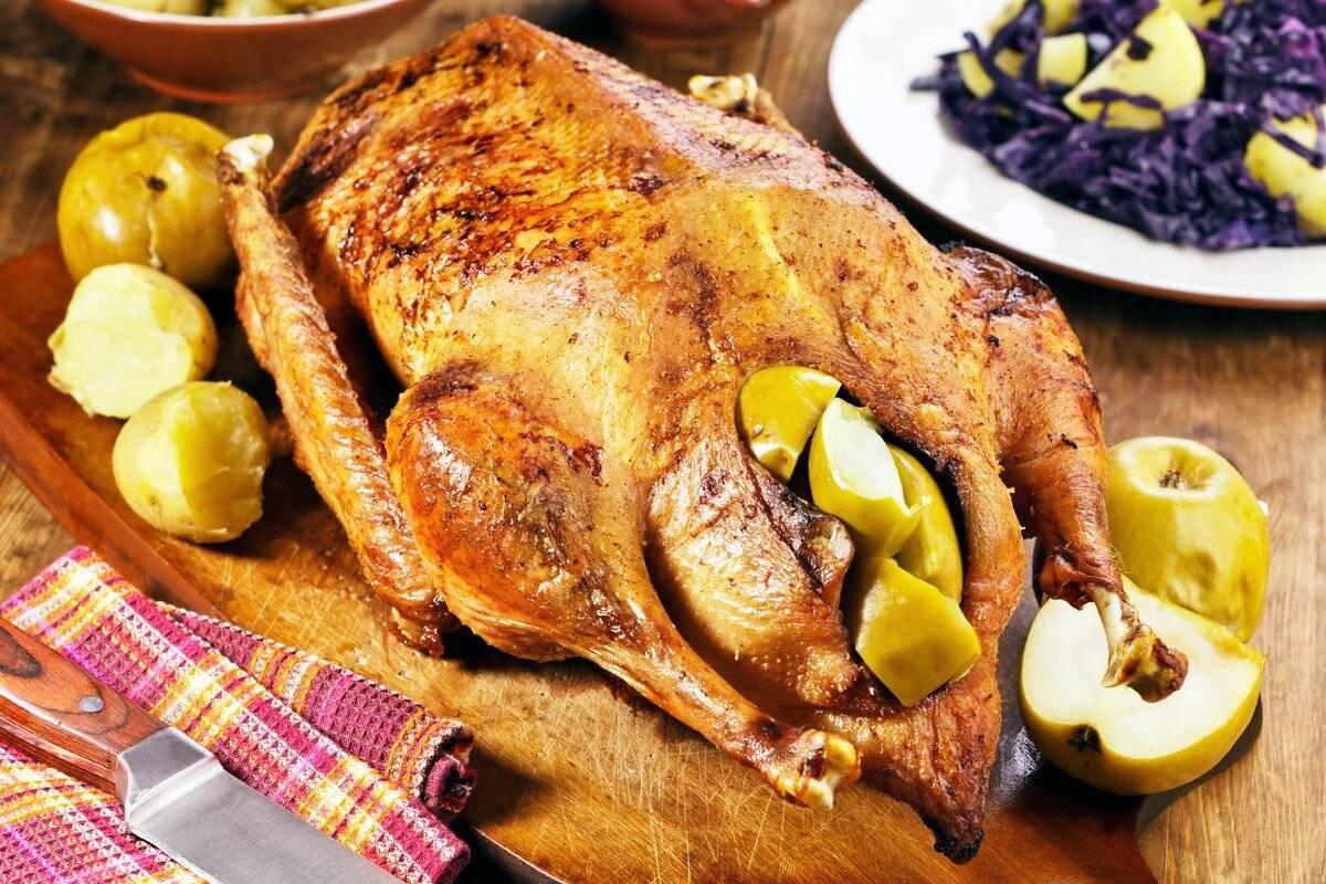 Рождественский гусь: лучшие рецепты и советы по приготовлению