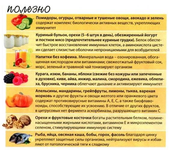 12 продуктов для повышения иммунитета