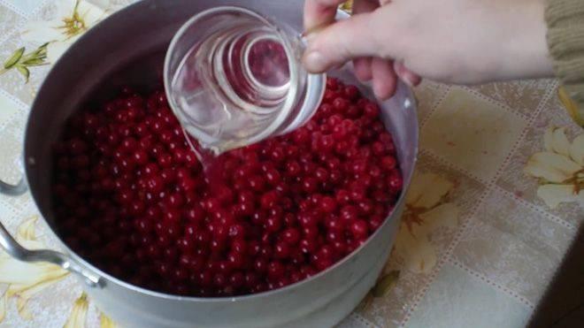 Варенье из калины: польза и вред, рецепты приготовления