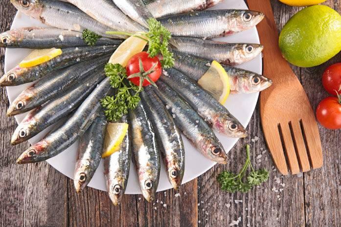 Рыба анчоус польза