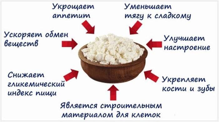 Творог из восстановленного молока польза и вред