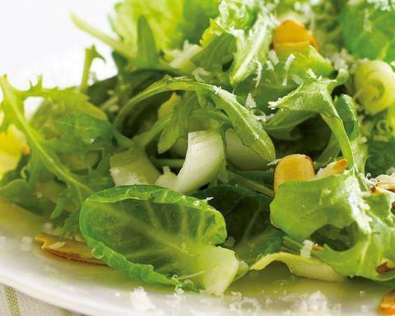 Листовой салат: польза и вред, как сохранить на зиму