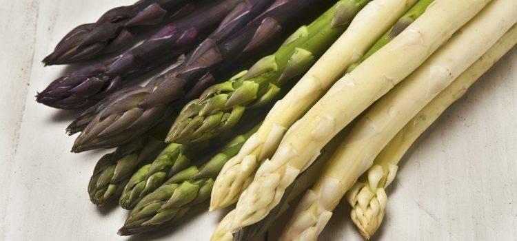 Соевая спаржа: польза и вред для здоровья, калорийность и применении в кулинарии, фото