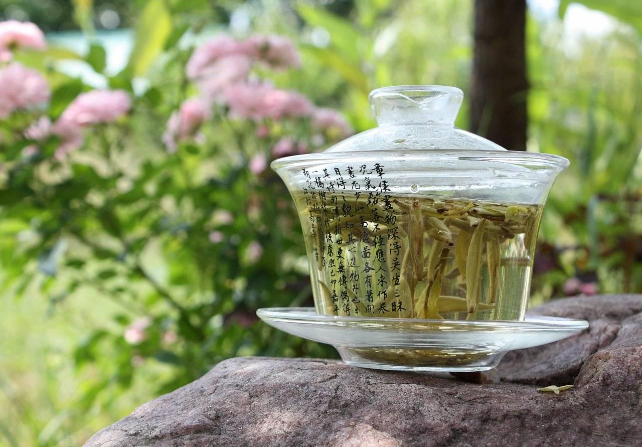 Чай польза и вред для здоровья