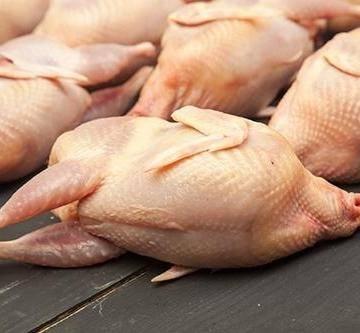 Мясо перепелов: польза и вред, секреты приготовления