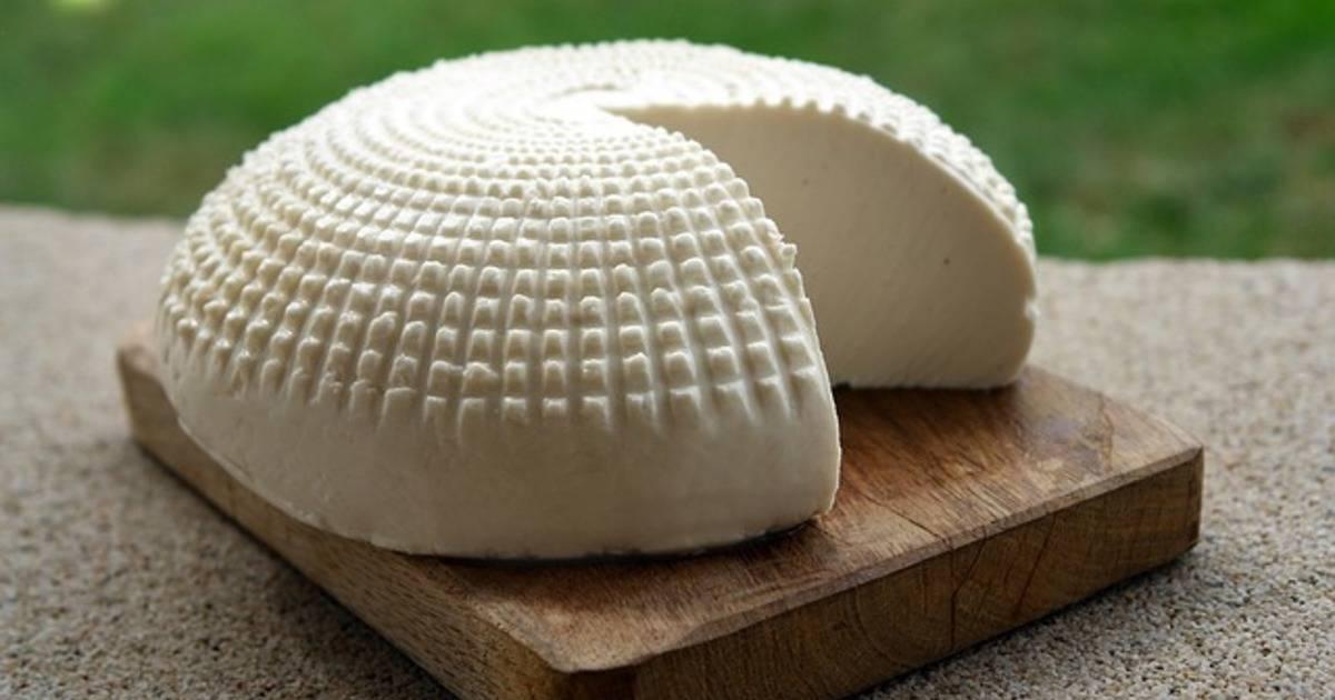Что можно сделать из адыгейского. адыгейский сыр — польза и вред для организма