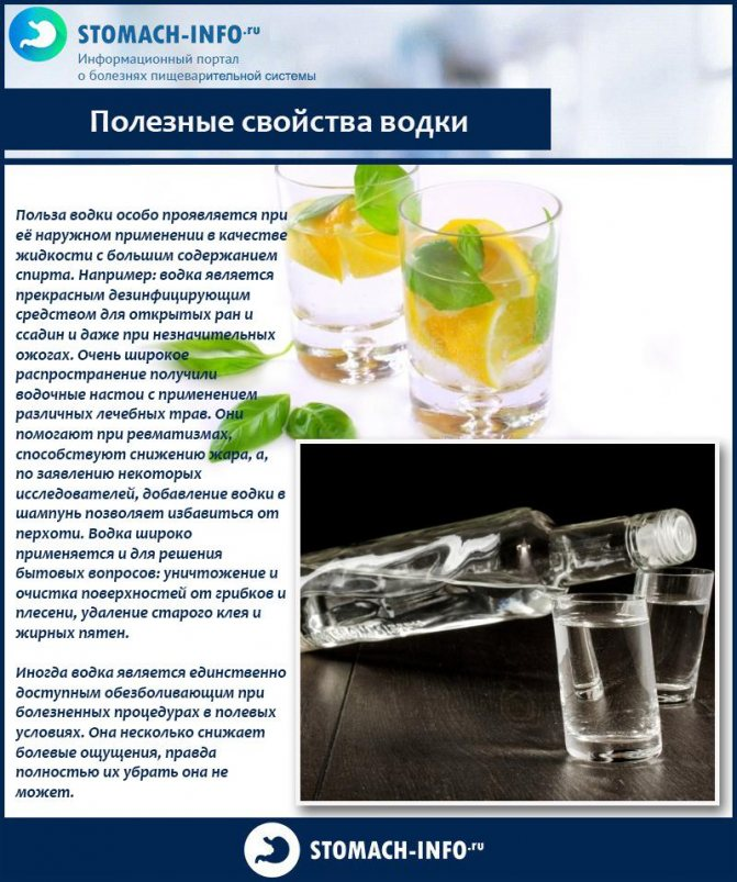 Польза и вред водки для здоровья организма