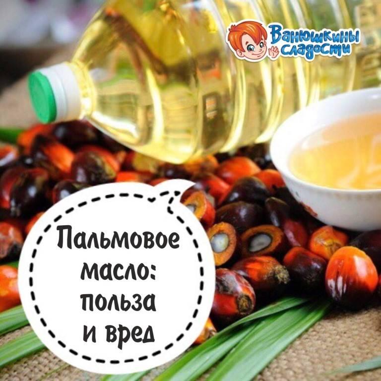 Пальмовое масло — польза и вред для здоровья, что это такое