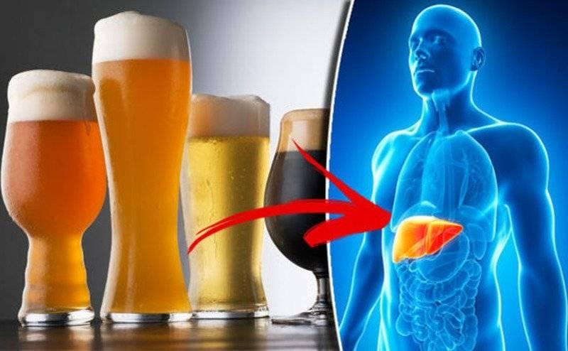 Польза и вред водки для организма человека
