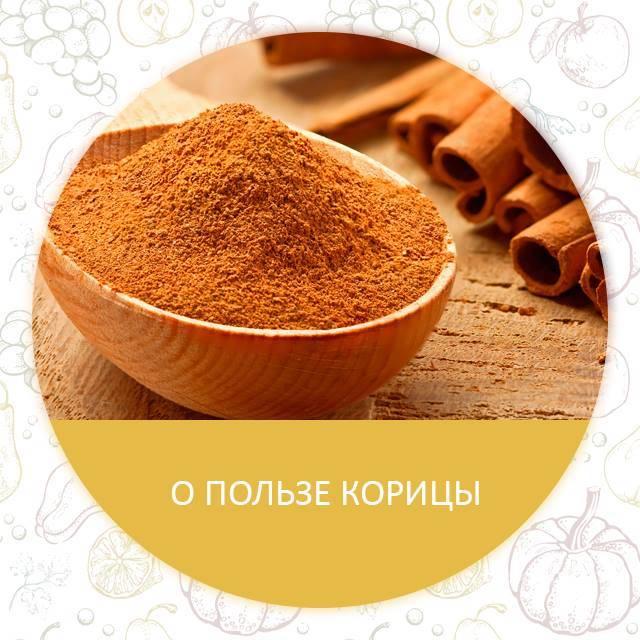 Ваниль: лечебные свойства и противопоказания, польза и вред
