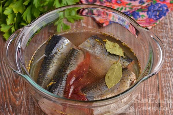 Солим селёдку быстро в домашних условиях: пошаговые фото рецепты