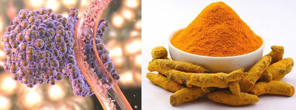 Куркума — польза и вред, рецепты применения для здоровья и красоты