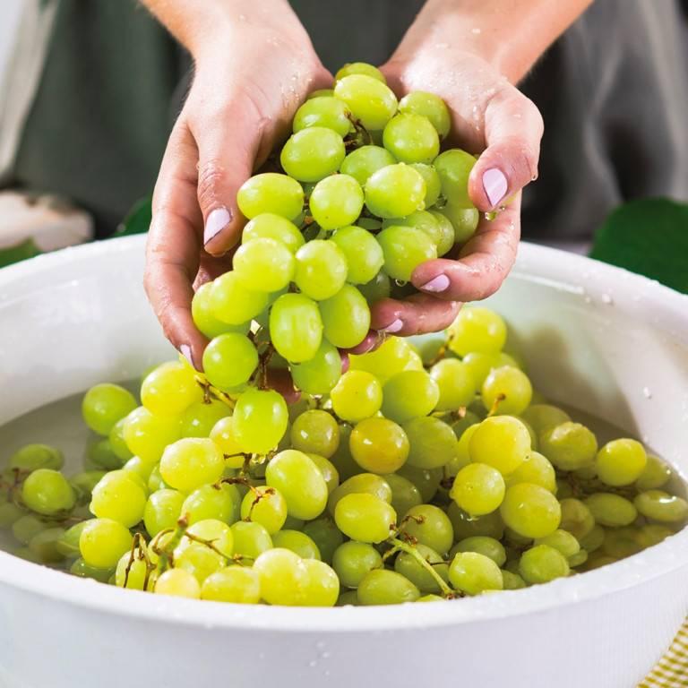 Косточки винограда. волшебный эликсир или вред?