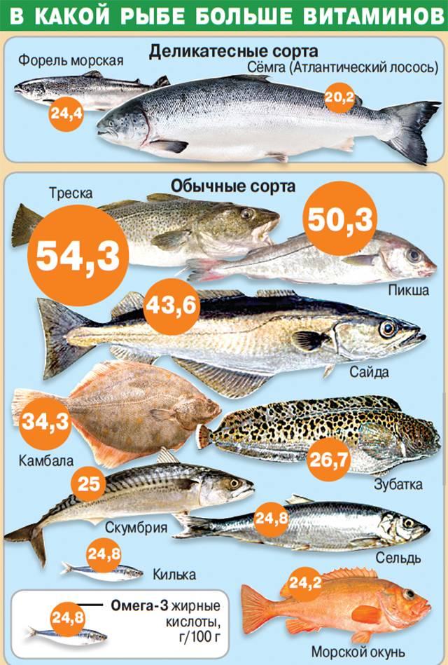 Вы точно знаете, какая рыба полезнее?