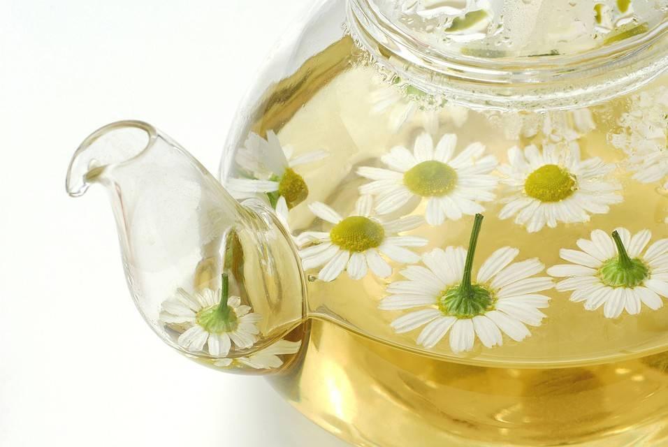 Ромашковый чай: вкусно и полезно