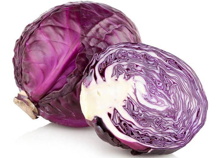 Краснокочанная капуста: польза и вред для здоровья, применение в кулинарии и народной медицине