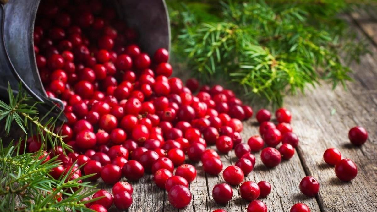 Чай из листьев костяники польза и вред. полезные свойства костяники. костяника: целебные свойства