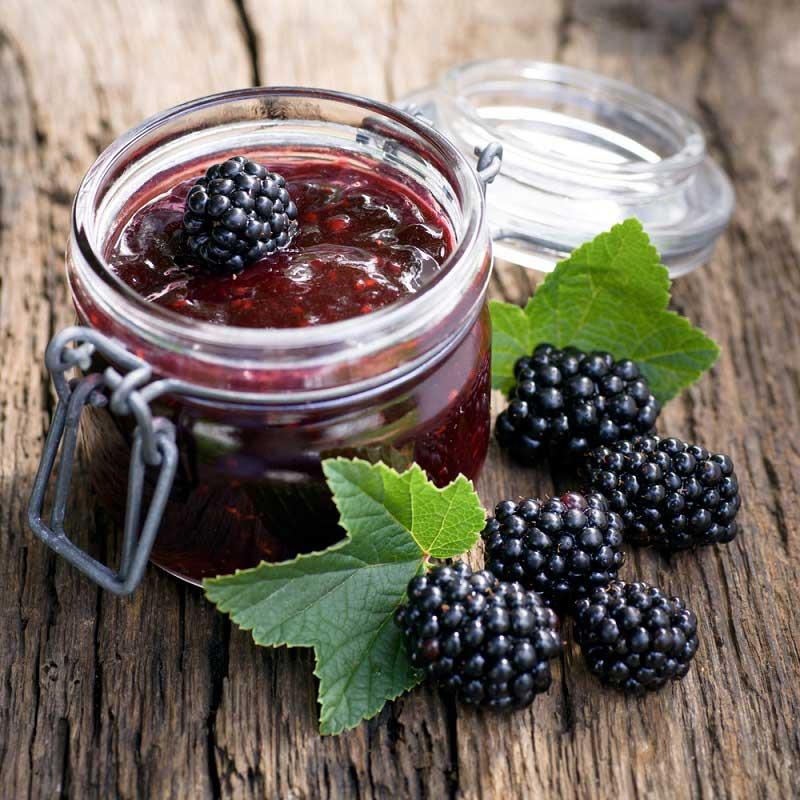 Лучшие рецепты варенья из ежевики на зиму и правила приготовления полезного ягодного десерта