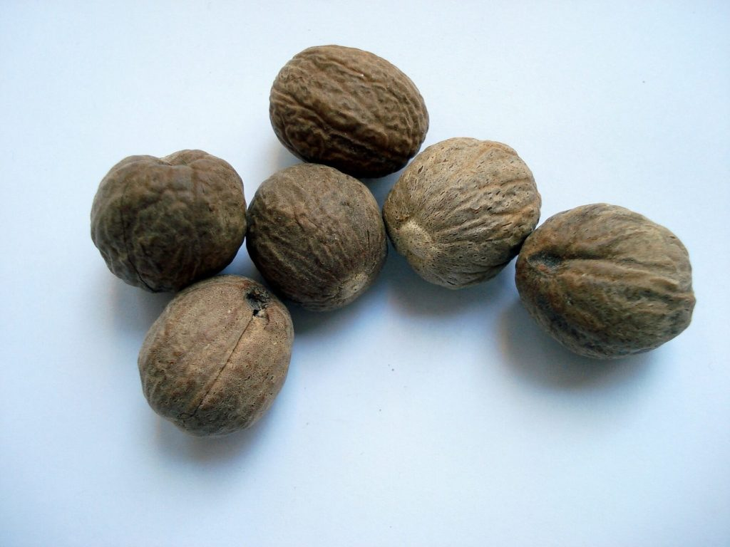 Мускатный орех, польза и вред для здоровья человека