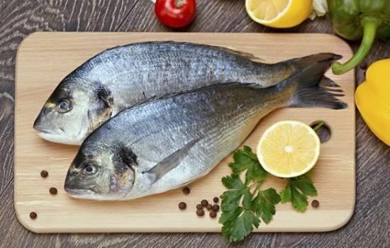 Полезные свойства и правила приготовления рыбы дорадо