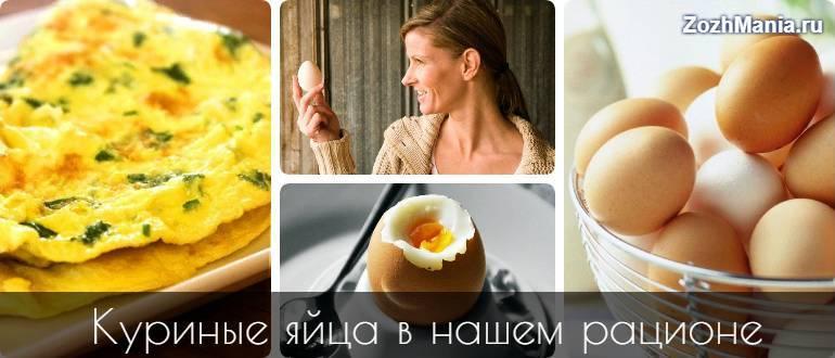 Польза свежих яиц куриных
