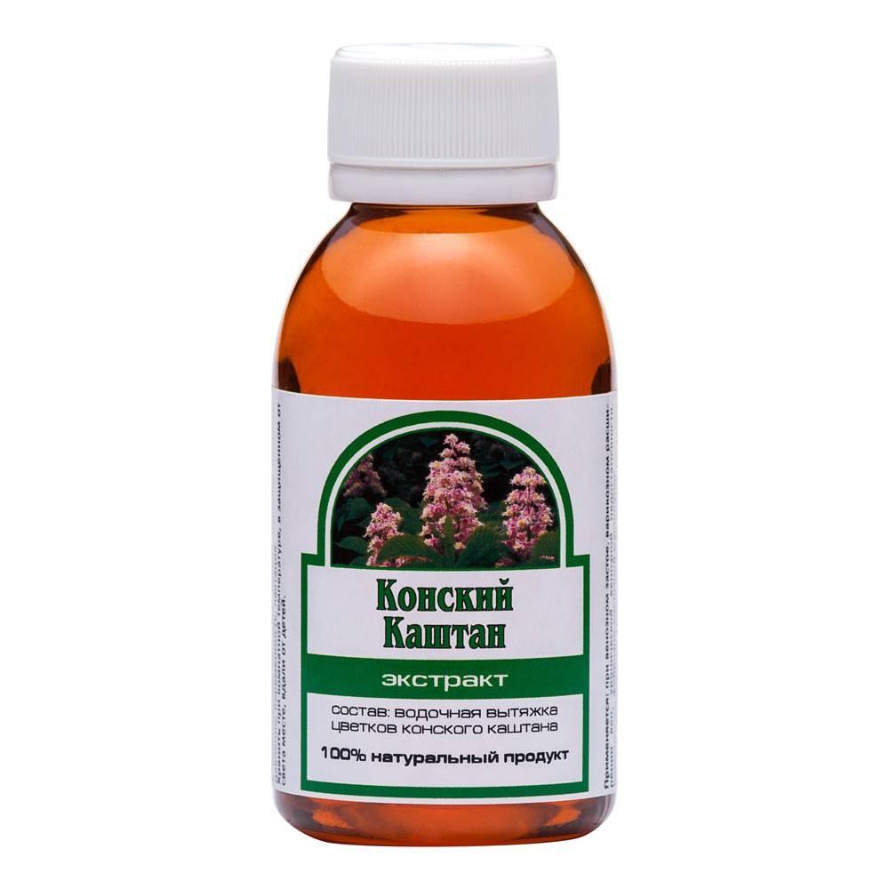 Конский каштан — лечебные свойства и противопоказания к использованию